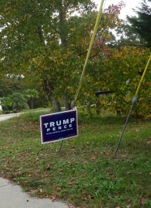 the one presidential race sign at our polling place